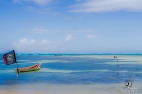 Boats in Martinique