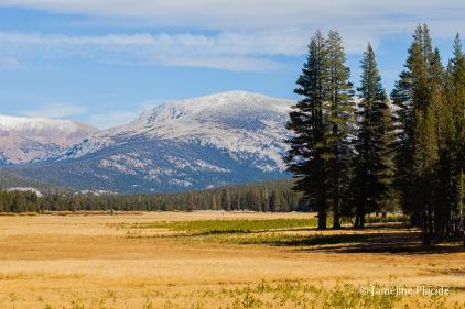 Tuolumne Meadows (Yosemite)