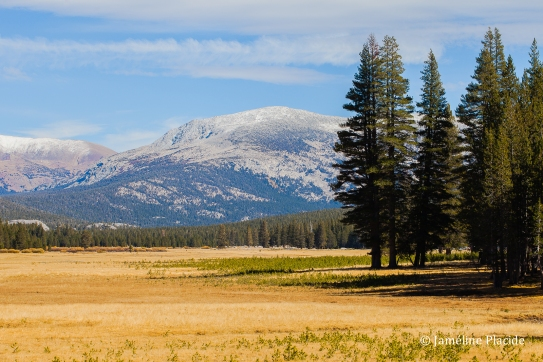 Tuolumne Meadows (Yosemite)